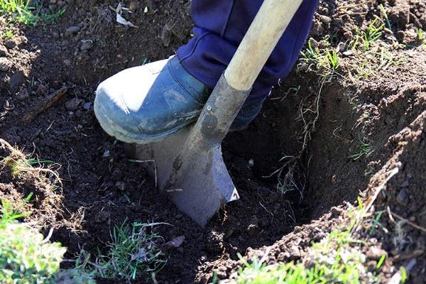 Использование лопаты